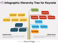 Infographic Hierarchy Tree for Keynote